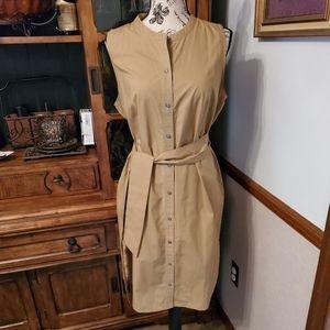 Dress J. CREW